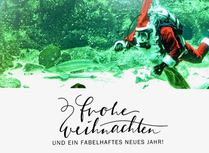 Foto © WWeidig Motiv Der Weihnachtsmann im Aquarium des Multimar Wattforum, Tönning 2019